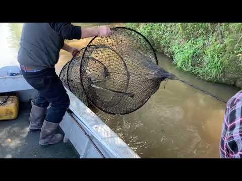 Hoop Nets South Louisiana