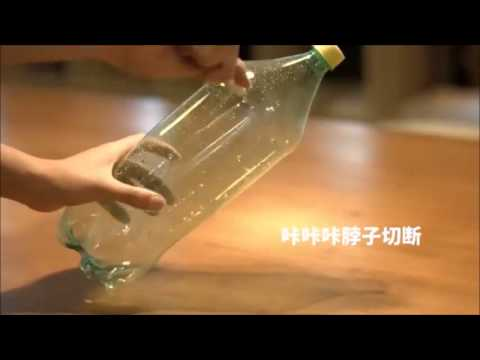 Video Cara Kerja Perangkap Nyamuk Botol yang Efektif