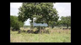 preview picture of video 'La Missione di Usokami - Video 1 - Da Dar Es Salam a Usokami.wmv'