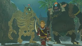 Black Hinox Vs Stalnox Vs Link - Zelda Breath Of The Wild