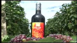 preview picture of video 'Charoen Pokphand Moon Valley Winery Sichuan China 2002'