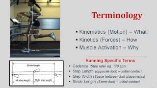 Gait Biomechanics- Simplified