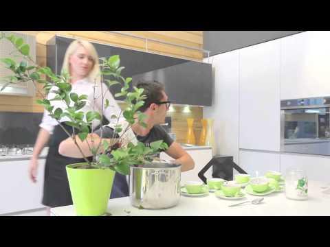 Spot Gastroteg - Capsule di tè verde deteinato