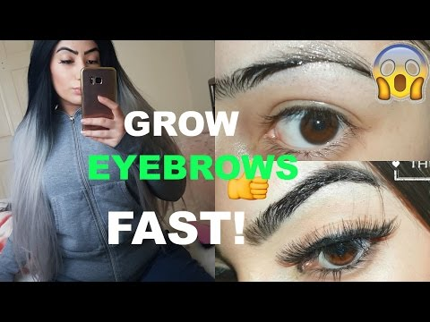 HOW TO GROW YOUR EYEBROWS FAST! Secret ingredient REVEALED!