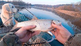 Отчеты о рыбалке в николаевской области 2020