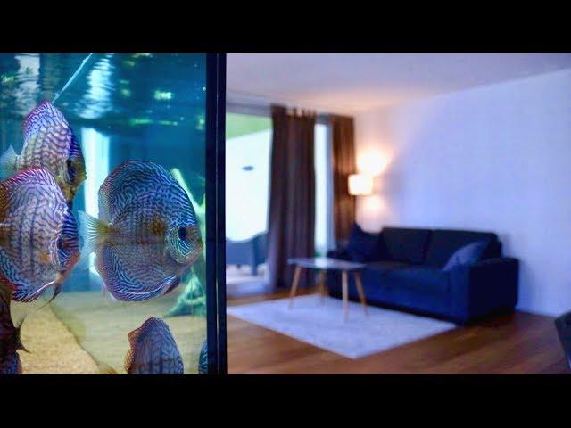 120 Gallon Living Room Discus Fish Tank   Juwel Rio 400