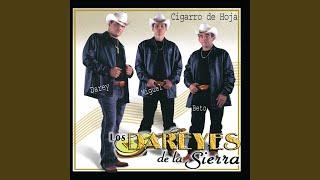 El Perdedor - Los Dareyes de la Sierra (Video)