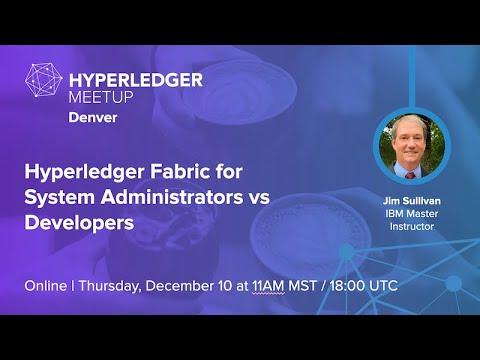 Hyperledger Fabric for System Administrators vs Developers ...