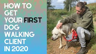 How To Get Your First Dog Walking Client In 2020