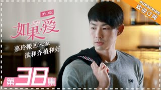 【Love Won't Wait 】EP38 | DVD Version | Cecilia Cheung, Vanness Wu, Thassapak Hsu 【芒果TV独播剧场】