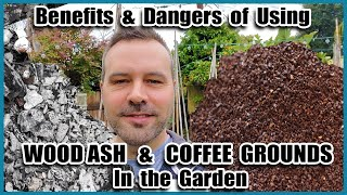 Benefits and Dangers of COFFEE GROUNDS and WOOD ASH in the Garden // Beginning Gardening