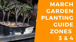March Planting Guide Zones 3 & 4