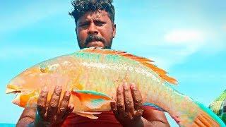 ВОТ ЭТО УЛЁТНАЯ РЫБАЛКА 2019 Вот это приколы на рыбалке #88 Fishing 2019