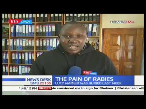 Rabies menance: one sister dead and another ailing from rabies both while sitting for their KCPE