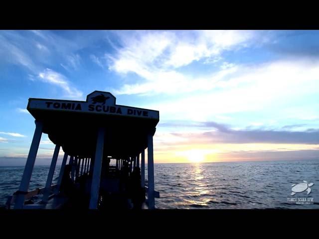 sportourism.id - Festival-Pulau-Tomia-2016-Kembali-Dongkrak-Destinasi-Wakatobi