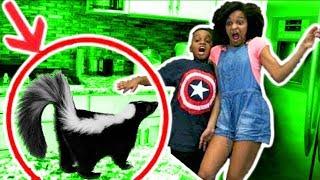 BAD BABY SKUNK ATTACKS! - Bad Baby Shiloh And Shasha Onyx Kids