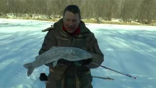 Зимняя рыбалка на реках дальнего востока