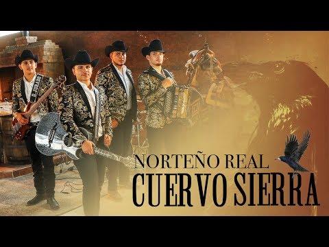 Norteño Real - CUERVO SIERRA EN VIVO - (LOS AUSTEROS DE DURANGO)