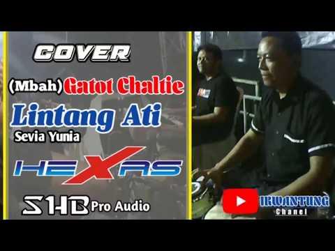 LINTANG ATI _ SEVIA YUNIA (Cover) KENDHANG (Mbah) GATOT CHALTIE HEXAS