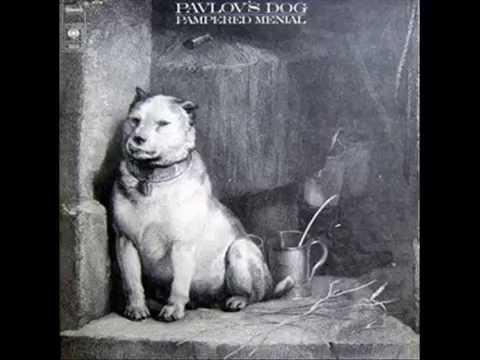 Pavlov S Dog Natchez Trace
