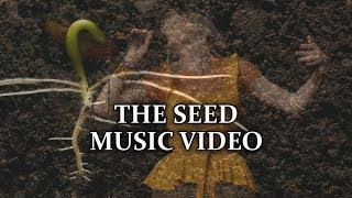 AURORA   The Seed Music Video (Türkçe + English Subtitle)