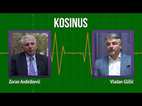 Kosinus: Velike sile će odlučiti o pitanju Kosova