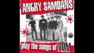 "Angry Samoans ""I'm In Love With Your Mom"" (1978 DEMO - MONO version)"