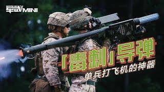 【军武MINI】毒刺导弹