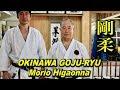 Okinawalaista karatea.