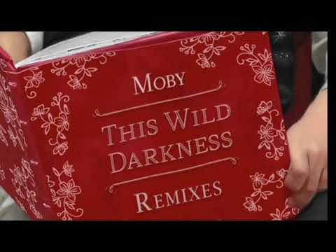 Moby - This Wild Darkness (Sunrise Mix)