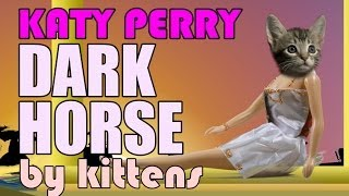 Katy Perry - Dark Horse (Cute Kitten Parody)