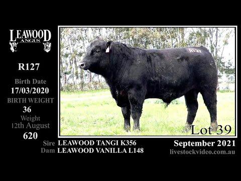 LEAWOOD TANGI R127