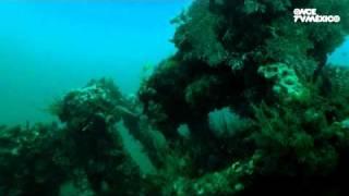 Nuestros Mares - Sistema Arrecifal