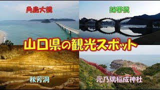 山口県の観光スポット錦帯橋、秋芳洞、元乃隅稲成神社、角島大橋をまわります