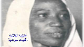 مازيكا عائشة الفلاتية عني مالم صدو اتوارو - علي محمود التنقاري تحميل MP3