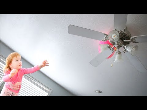 HIDDEN EASTER EGGS!! (stuck in the fan)