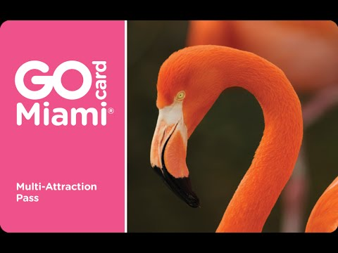 Go Miami® Card - Things to Do in Miami on Vacation