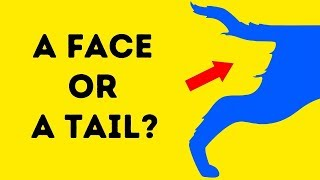 14 OPTICAL ILLUSIONS TO TEST YOUR PERSONALITY TYPE