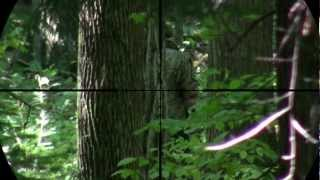preview picture of video 'KJW M700 Sniper Scope Cam 6'