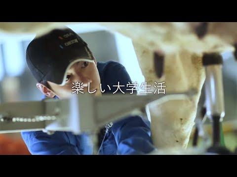 15秒CM「実習」篇