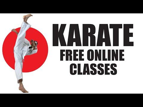 Free Online Karate Classes