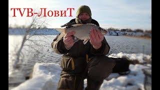 Приколы на рыбалке! +Анонс следующий отличной зимний рыбалки на карпа карася и леща | Фидер рулит