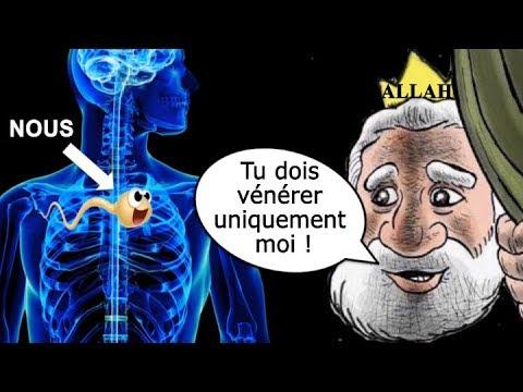 Lenlèvement de lopération de la prostate et de la puissance