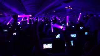 Brussels Airlines Tomorrowland Party Flight 2017