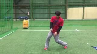 「手の甲(左打者は左手・右打者は右手)でボールを打つ」(ブリスフィールド東大阪 野球教室 平下コーチ(元阪神タイガース))