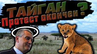 Тайган Защита животных Пригласили президента в парк львов