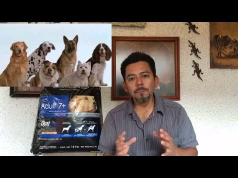 Proplan Senior 7+ de Purina