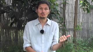 Fatigue Chronique 4: Sexualité, épuisement Et Solutions- Vivrecru.org