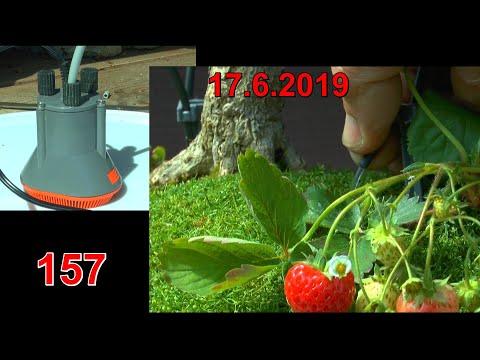 Gardena Bewässerung im zweiten Jahr neu installiert und erklärt vom Gärtner