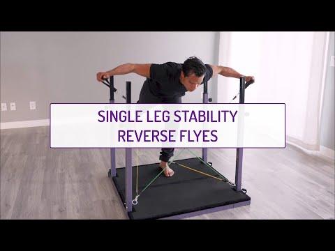 Single Leg Stability Reverse Flyes